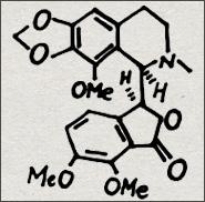 The opium alkaloid Noscapine